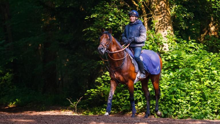 Fabien Lefebvre aboard Prix du Jockey Club challenger, Beat Generation