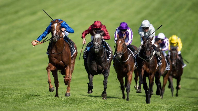 Saxon Warrior (purple) suffered trouble in running but ultimately failed to pick up under Ryan Moore
