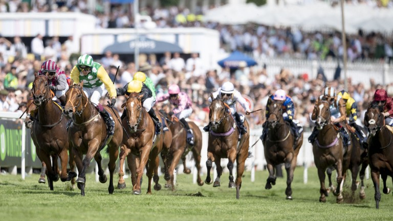 Dash for the cash: runners hit the rising ground having gone helter-skelter in the Investec Dash