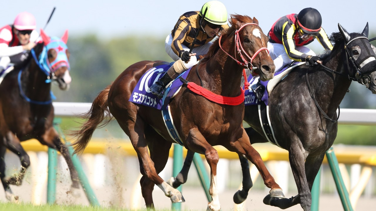 Yasuda kinen betting on sports empire online betting