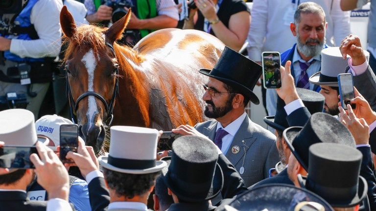 Masar - with owner and breeder Sheikh Mohammed - has Lodge Park Stud's totemic mares Park Express and Park Appeal in his pedigree