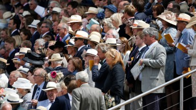 For some reason, Panama's ultras love a day out at Goodwood races