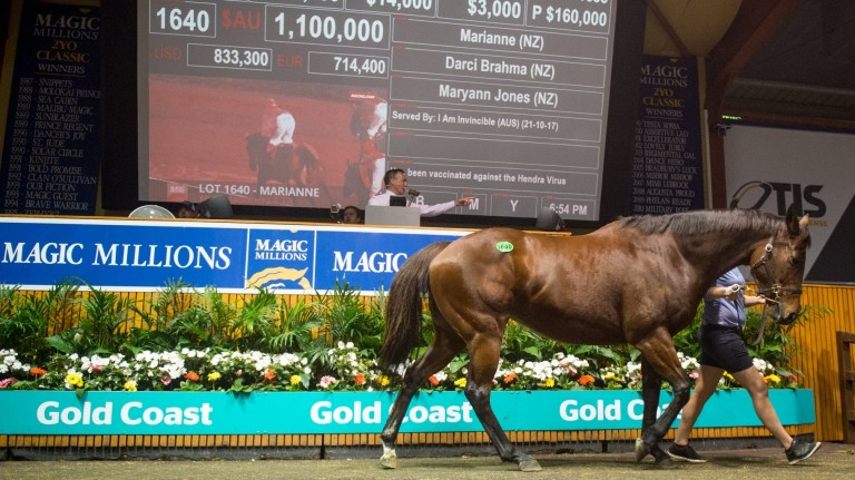 Marianne who was knocked down to Coolmore Australia's Tom Magnier for A$1.1m