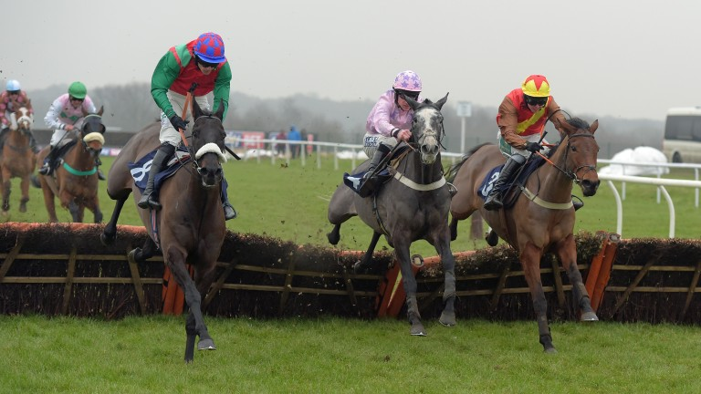 Stepover (right) always runs well at Southwell, according to trainer Alex Hales