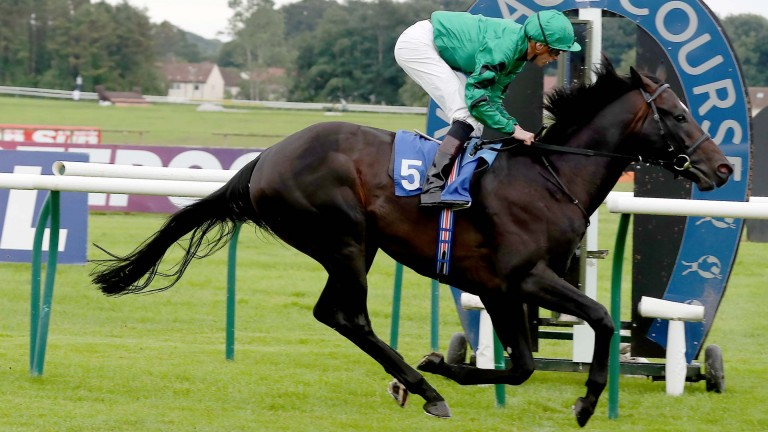 Victory for Pouvoir Magique at Newcastle would earn a 5lb penalty towards a place in the Royal Hunt Cup line-up