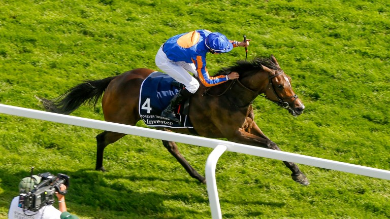 Forever Together: Oaks star beaten by four-year-old Urban Fox in the Group 1 Pretty Polly Stakes