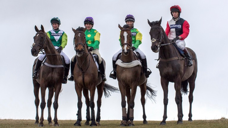 Legendary line-up (left to right): Denman, Master Minded, Kauto Star and Big Buck's