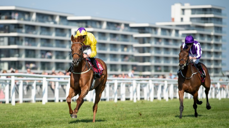 Sea Of Class: returns to Newbury for the Listed Abingdon Stakes