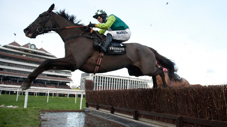 "Denman: ""He was a magic horse who had a tremendous following because of the wholehearted way he went about his racing"""