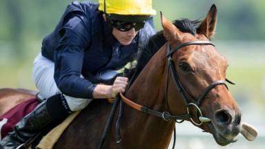 Crystal Ocean tees up a Hardwicke Stakes bid with success at Newbury
