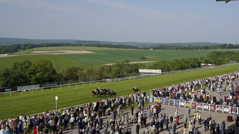 Goodwood: violent scenes marred the track's opening fixture of the season