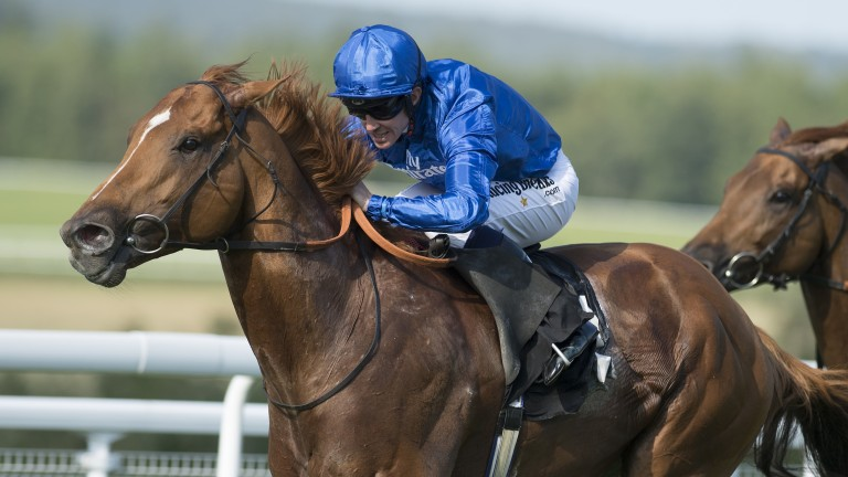 Dutch Connection: drops in class and reverts to best trip at Haydock