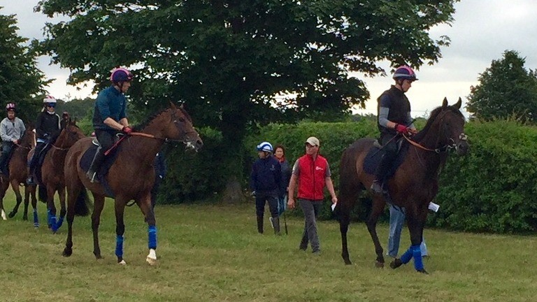 Autocratic (left) and Poet's Word head for the Cambridge Road Polytrack