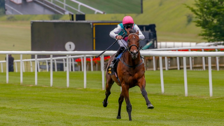 Calyx: wins in style at Newmarket