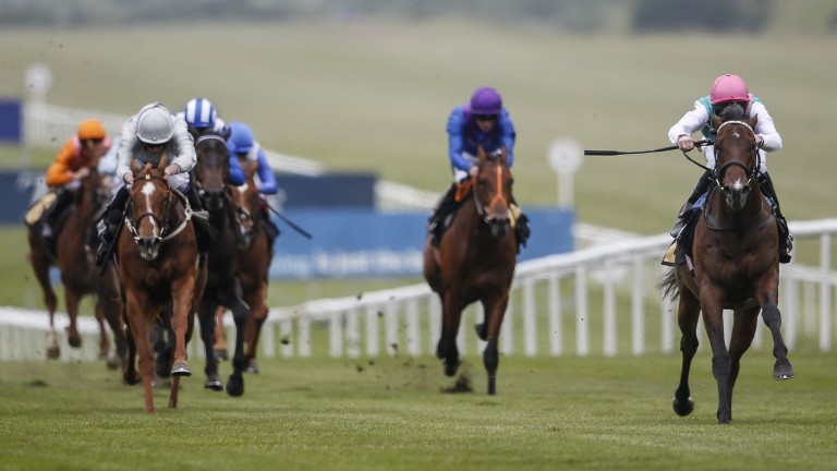 Calyx (right) makes a winning debut at Newmarket
