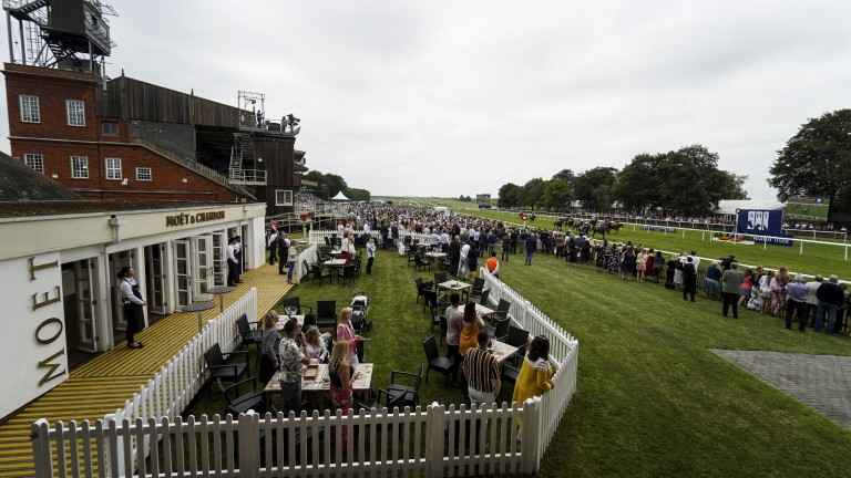 Fizz and fun: racegoers get a great view of the action from the champagne bar as runners near the finish in the 7f handicap