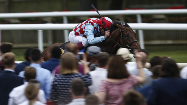 Racegoers in the Red: Amazing Red gallops to victory in the 1m6f handicap watched by a large crowd near the stands' rail