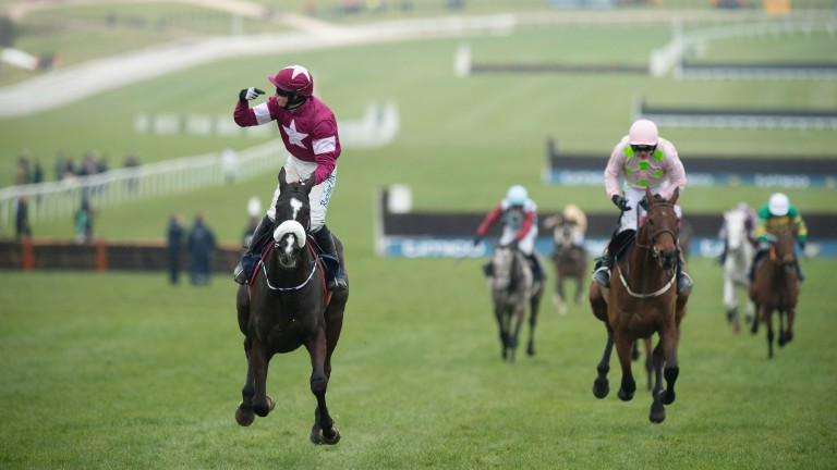 Don Cossack wins the Cheltenham Gold Cup