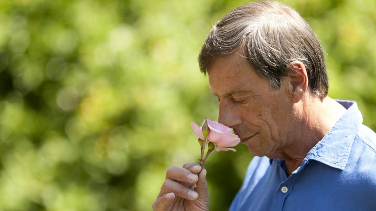 Sir Henry Cecil pictured in the gardens at Warren Place in Newmarket in June 2010