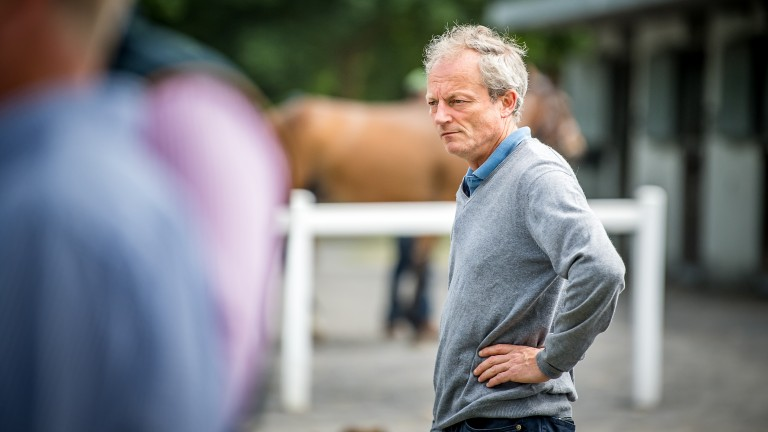 Walter Connors: the master of Slugarra Farm takes an 11-strong draft to the Goffs Land Rover Sale