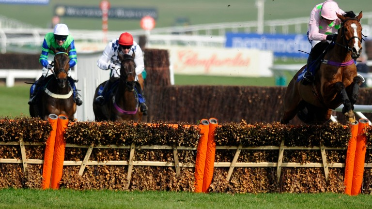 Ballyalton (left) chases home Faugheen at a respectful distance in the 2014 Neptune Investment Managament Novices' Hurdle at the Cheltenham Festival