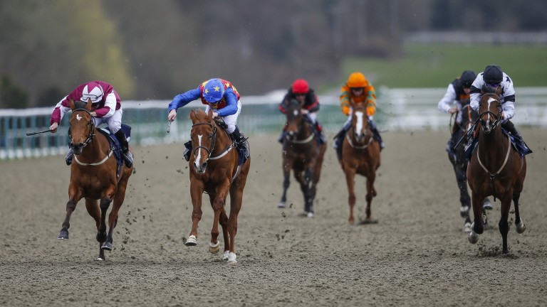 Jungle Inthebungle (second left) breaks his maiden at Lingfield Park