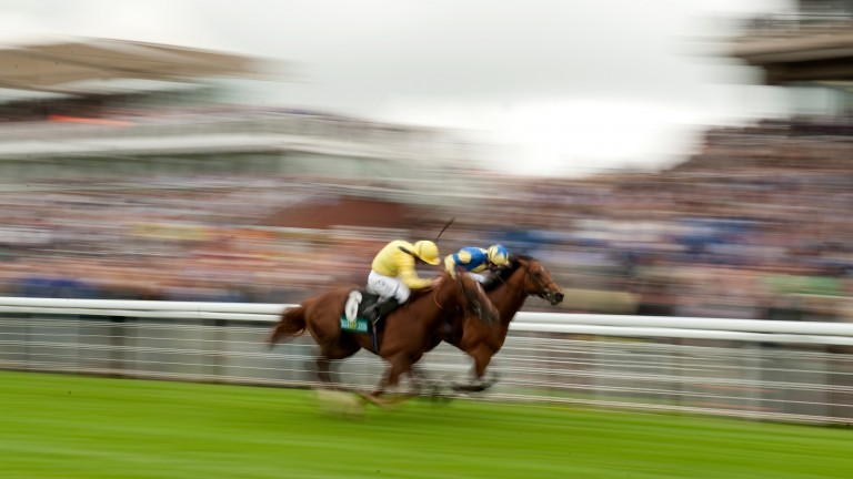 Bungle Inthejungle (farside) lands the Molecomb Stakes at Glorious Goodwood