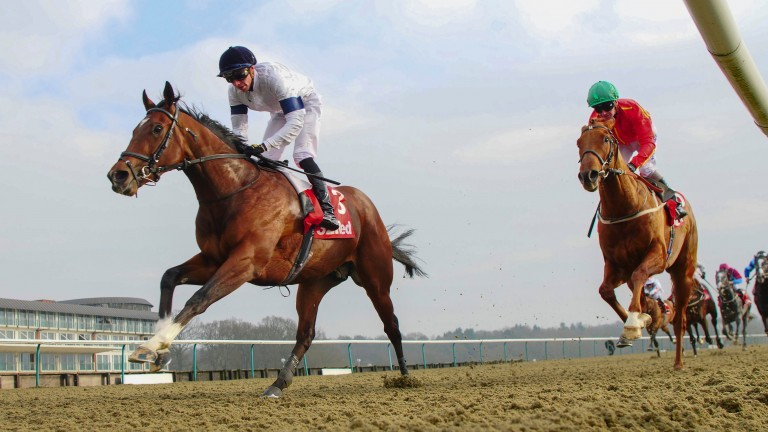 Headway: on course for the Jersey Stakes on second day