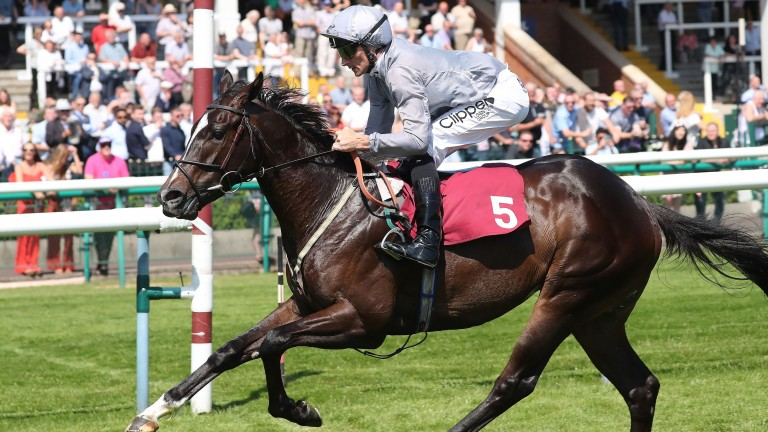 Soldiers Call: recent Haydock winner is well regarded