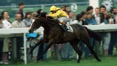 Sandown Park 26.5.1989The Brigadier Gerrard Stakes.Winner Mtoto - Michael Roberts