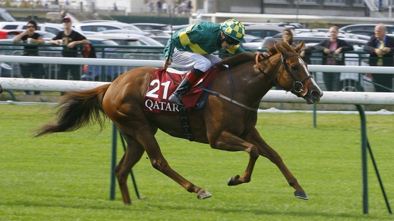 Gilt Edge Girl: her Fastnet Rock half-sister Novel Concept will be offered in foal to Footstepsinthesand