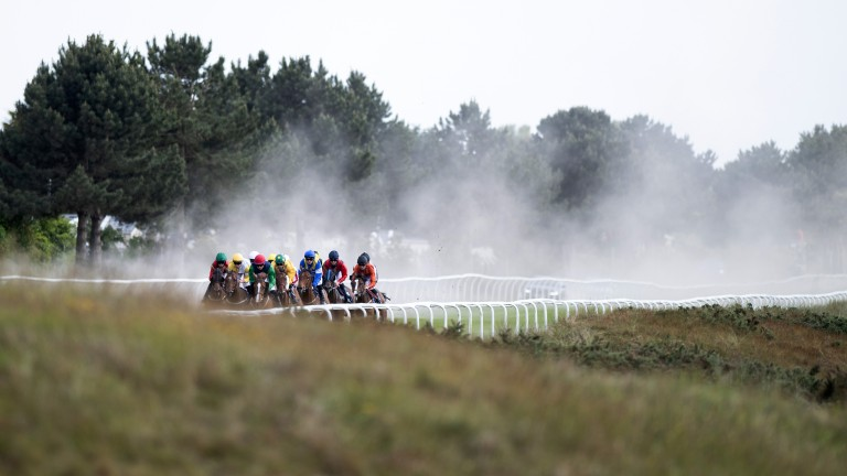 Yarmouth: small fields present opportunities as heatwave continues