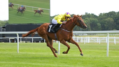 """SEA OF CLASS ridden by James Doyle 1st The Johnnie Lewis Memorial British EBF Stakes (Abingdon Stakes) (Listed) at Newbury 14/6/18 Copyright: Ian Headington/racingfotos.comTHIS IMAGE IS SOURCED FROM AND MUST BE BYLINED """"RACINGFOTOS.COM"""""""