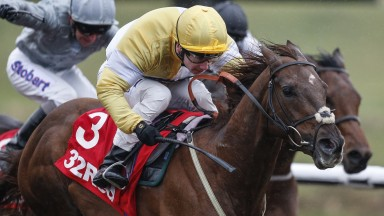 Canada-bound: Corinthia Knight winning his all-weather championship race at Lingfield in April
