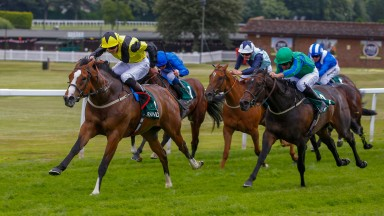 Haddaf begins to pull away from the pack in the Scurry Stakes