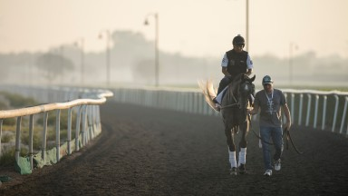 Pavel: finished fourth in the Dubai World Cup this year