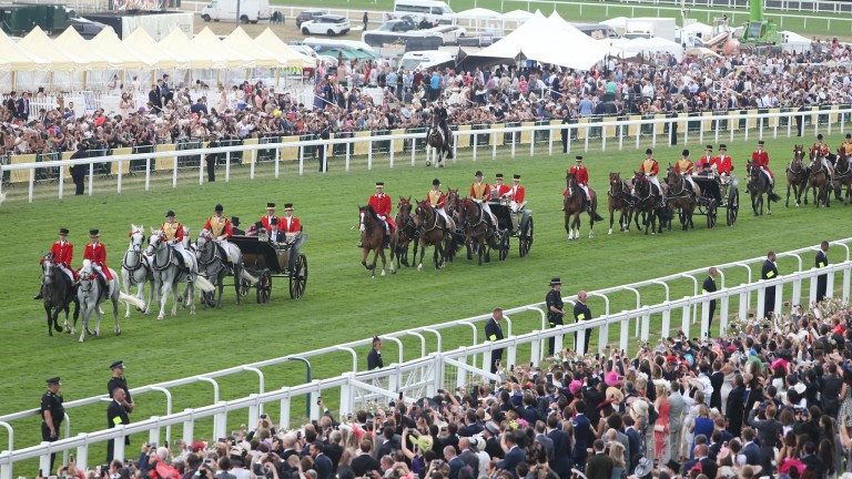 Calyx: can triumph in the Coventry Stakes