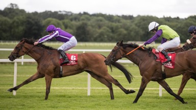 Flattering gains a deserved success at stakes level in the Munster Oaks