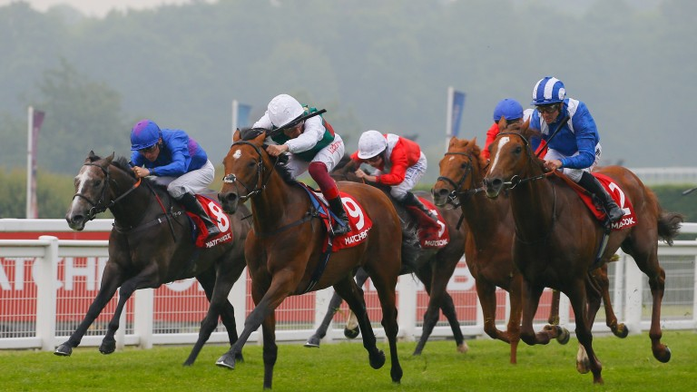 Without Parole and Frankie Dettori (white cap) come home in front in the 2018 Heron Stakes at Sandown