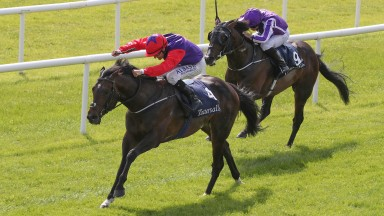 Romanised clears away from US Navy Flag to land the Irish 2,000 Guineas