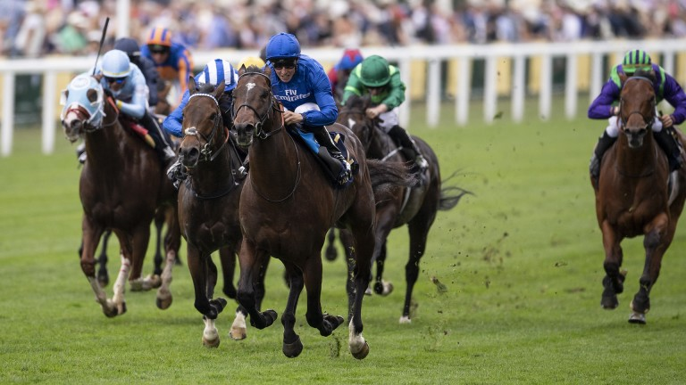 Blue Point: finally won his Group 1 in the King's Stand Stakes at Royal Ascot