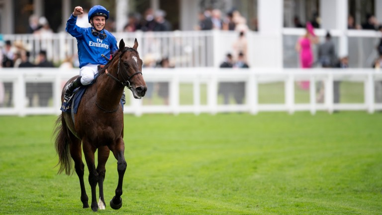 Blue Point: will be hoping to vanquish Battaash again in the Nunthorpe Stakes