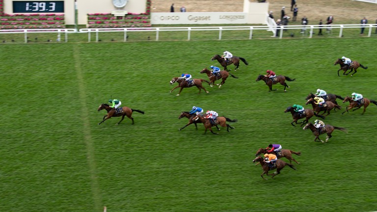 Settle For Bay and Billy Lee win the Royal Hunt Cup in fine fashion