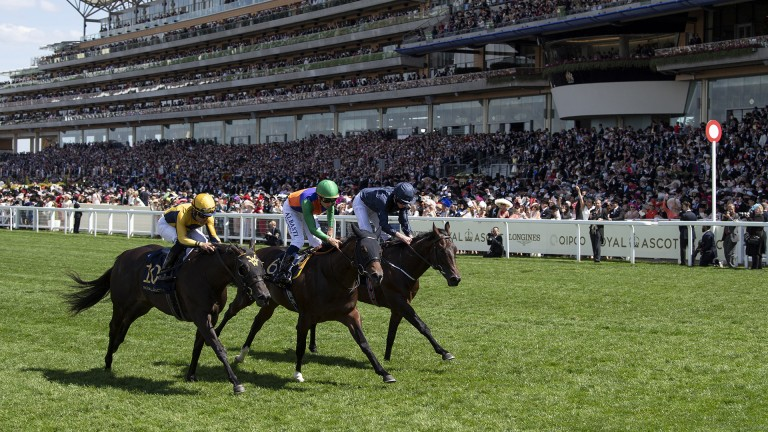 Land Force (far side) bidding to follow up on his close third in Norfolk Stakes
