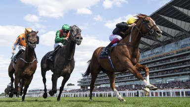 Race of the day: Stradivarius (right) stays on strongly under Frankie Dettori on his first attempt over 2m4f to win the  Gold Cup, defeating Vazirabad (middle) and Torcedor