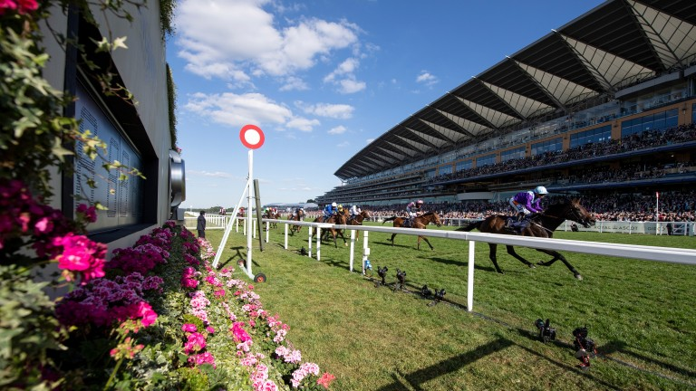 Dash Of Spice comes home a clear winner of the Duke of Edinburgh Stakes