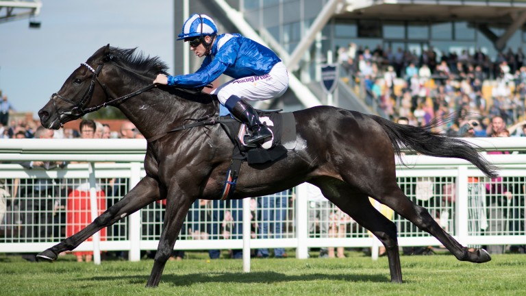 Emaraaty: disappointed at Royal Ascot but can bounce back at Newmarket