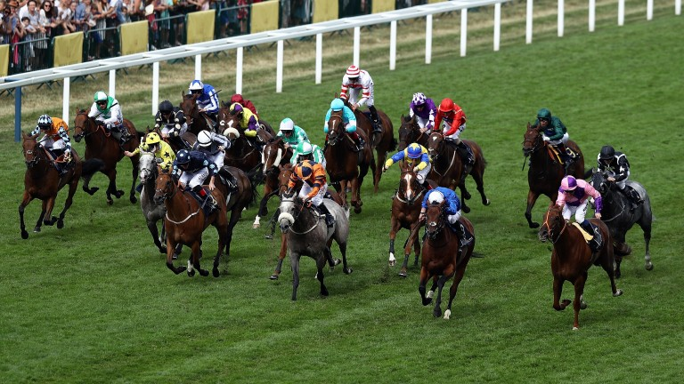 The field thunders down the track in the Wokingham, won by Bacchus (right)