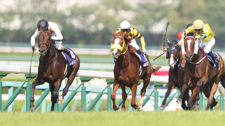 Mikki Rocket (black cap) is chased down by Werther (right) but holds on at Hanshin
