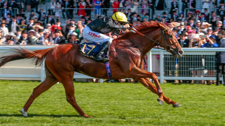 Agrotera and Jamie Spencer came from last to first at Royal Ascot in June